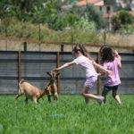 eden-animal-village-campus-2020 (78)