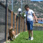 eden-animal-village-campus-2020 (95)